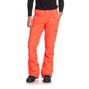 DC Womens Recruit Snow Pant L